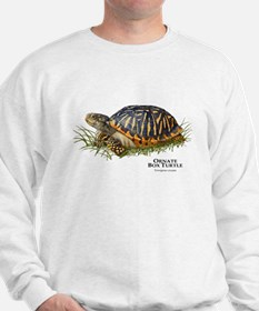 Ornate Box Turtle Jumper