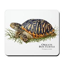 Ornate Box Turtle Mousepad