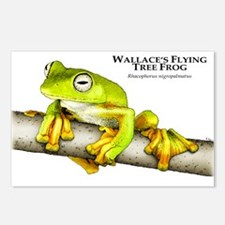 Wallace's Flying Frog Postcards (Package of 8)