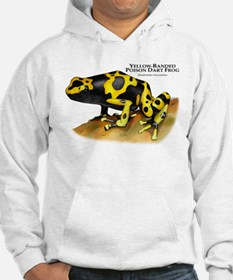 Yellow-Banded Poison Dart Fro Jumper Hoody