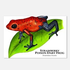 Strawberry Poison Dart Frog Postcards (Package of