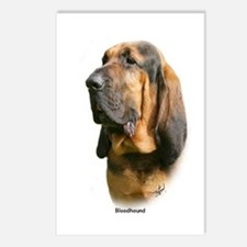 Bloodhound 9Y404D-135 Postcards (Package of 8)