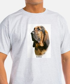 Bloodhound 9Y404D-135 T-Shirt