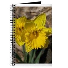 Funny Daffodil Journal