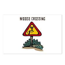 Moose Crossing Postcards (Package of 8)