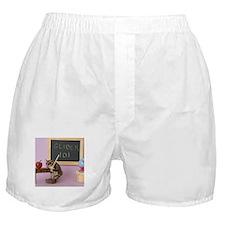 School #2 Boxer Shorts