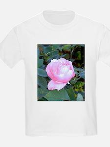 Late Summer Bloom T-Shirt