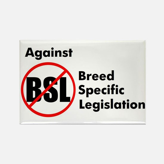 Anti-BSL Rectangle Magnet