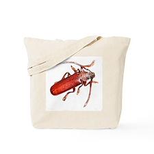 Brown Prionid Beetle Tote Bag
