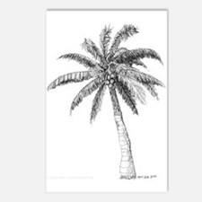 'Lone Palm' Postcards (Package of 8)