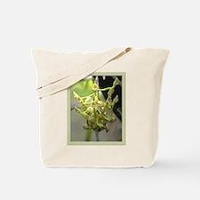epi. anceps Orchid Tote Bag