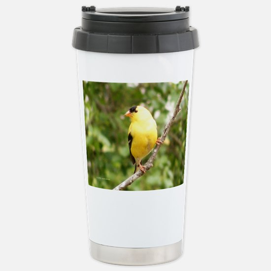 American Goldfinch Stainless Steel Travel Mug