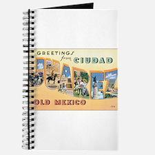 Ciudad Juárez Mexico Journal