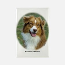 Australian Shepherd 9K5D-02 Rectangle Magnet