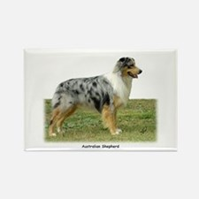Australian Shepherd 9K7D-20 Rectangle Magnet