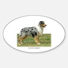Australian Shepherd 9K7D-20 Sticker (Oval)