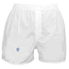 Roto Hippo Boxer Shorts