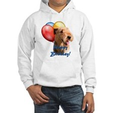 Airedale Balloon Hoodie