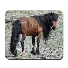 Mongolian Horse Mousepad