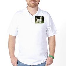 Afghan Hound 9J32D-21 T-Shirt