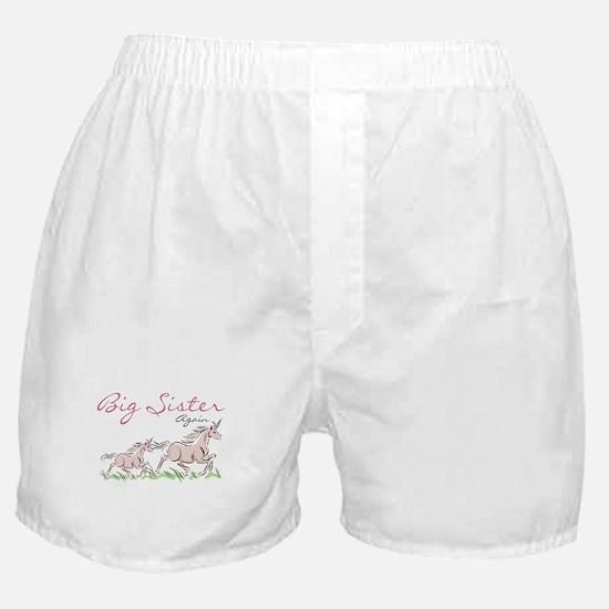 Unicorn Big Sister Again Boxer Shorts