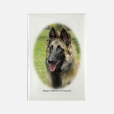 Belgian Shepherd (Terveuren) Rectangle Magnet