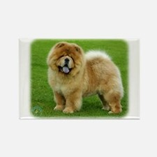 Chow Chow 9B008D-06 Rectangle Magnet (100 pack)