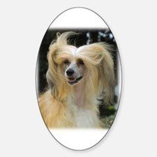 Chinese Crested 9W016D-149 Sticker (Oval)