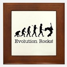 Evolution Rocks Framed Tile