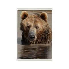 Grizzled Rectangle Magnet (100 pack)