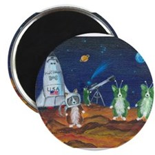 Take Me To Your Leader Pembroke Welsh Corgi Magnet