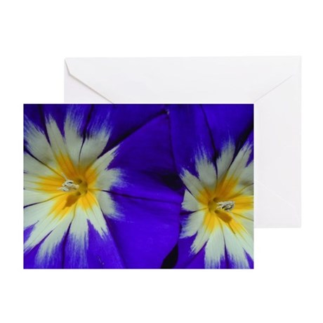 TriColor Morning Glory Greeting Cards (Pk of 10)