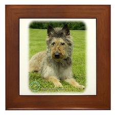 Belgian Shepherd (Laekenois) Framed Tile