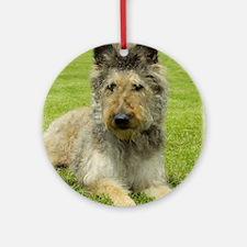 Belgian Shepherd (Laekenois) Ornament (Round)
