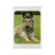 Belgian Shepherd (Laekenois) Rectangle Magnet