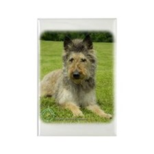 Belgian Shepherd (Laekenois) Rectangle Magnet (10