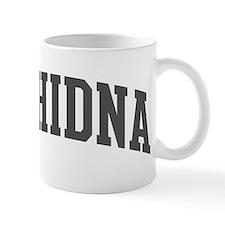 Echidna (curve-grey) Mug