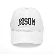 Bison (curve-grey) Baseball Cap