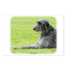 Deerhound 9R061D-090 Postcards (Package of 8)