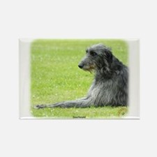 Deerhound 9R061D-090 Rectangle Magnet