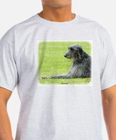 Deerhound 9R061D-090 T-Shirt