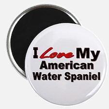 American Water Spaniel Magnet