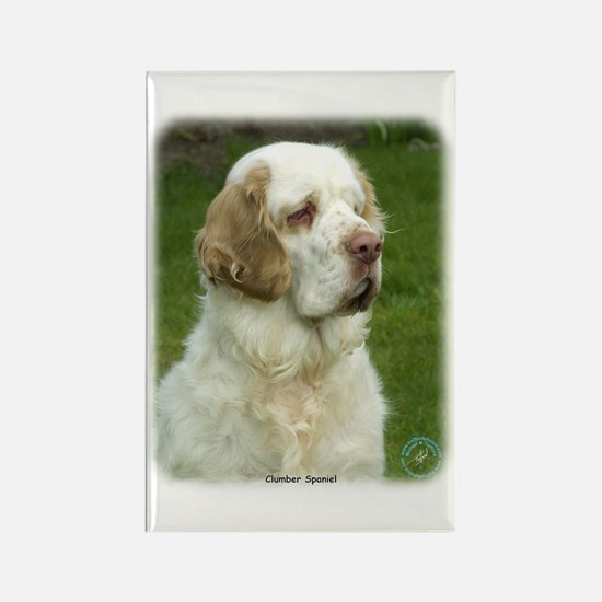 Clumber Spaniel 9Y003D-101 Rectangle Magnet