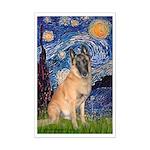 Starry/Belgian Malanois Mini Poster Print