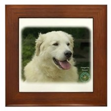 Kuvasz 8W02-17 Framed Tile