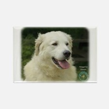 Kuvasz 8W02-17 Rectangle Magnet