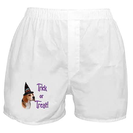 Beagle Trick Boxer Shorts