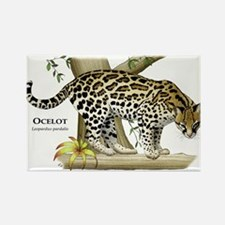 Ocelot Rectangle Magnet