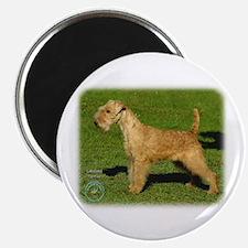 Lakeland Terrier 9P002D-026 Magnet