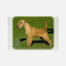 Lakeland Terrier 9P002D-026 Rectangle Magnet (10 p
